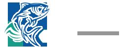 Comercial Ulmo Ltda. | Calidad en Productos del Mar